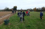 Fais ton bocage : des écoliers plantent une haie chez un agriculteur
